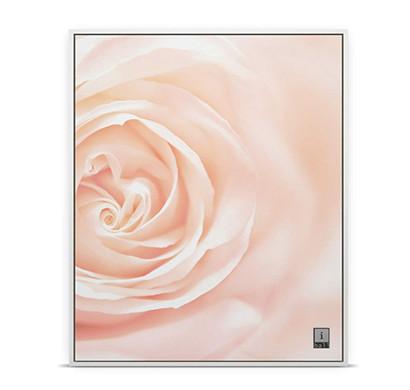iball blushing bloom frame speaker