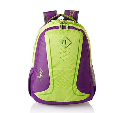 skybags (bpleo5ppl) footloose leo 5 / 25 ltrs / purple/ casual backpack