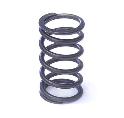 tata 253405158701 valve spring inner 407