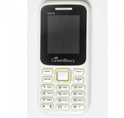 greenberry gb310 (white)