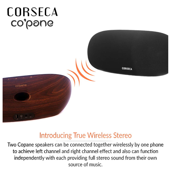 Corseca COPANE (DMS8250) Bluetooth Speaker with True Wireless Stereo Technology (Black)